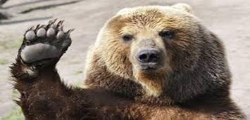 """""""Technicals Finally Flushing Bears Out Of Hibernation?"""" or """"Inverted Yield Curve Stoke Recession Fears"""""""